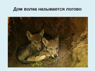 Дом волка называется логово