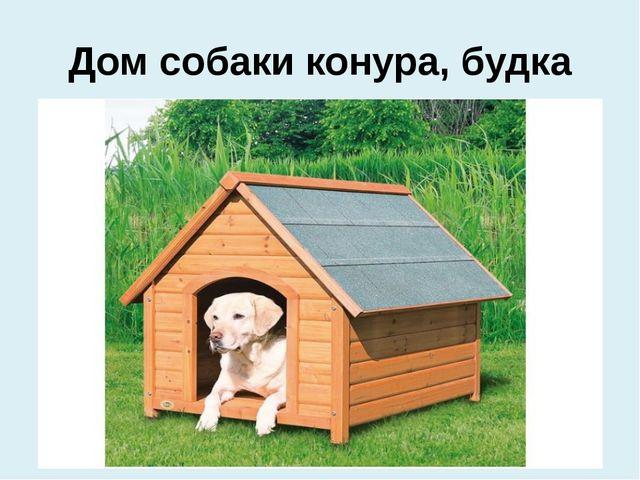 Дом собаки конура, будка