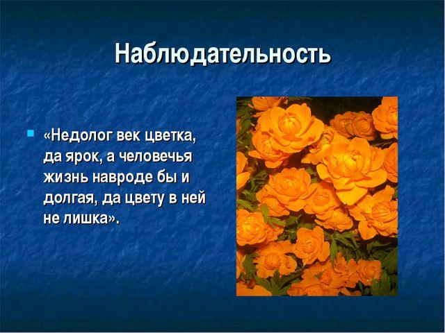 Наблюдательность «Недолог век цветка, да ярок, а человечья жизнь навроде бы и...