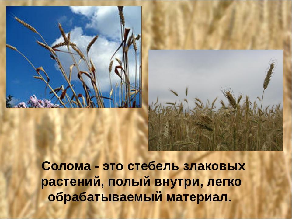 Солома - это стебель злаковых растений, полый внутри, легко обрабатываемый м...