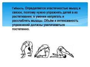 Гибкость. Определяется эластичностью мышц и связок, поэтому нужно упражнять д