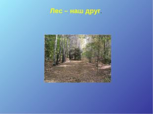 Лес – наш друг.