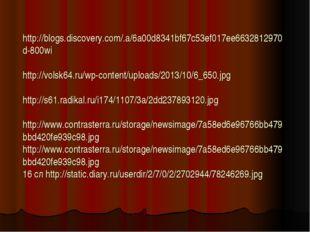 http://blogs.discovery.com/.a/6a00d8341bf67c53ef017ee6632812970d-800wi http: