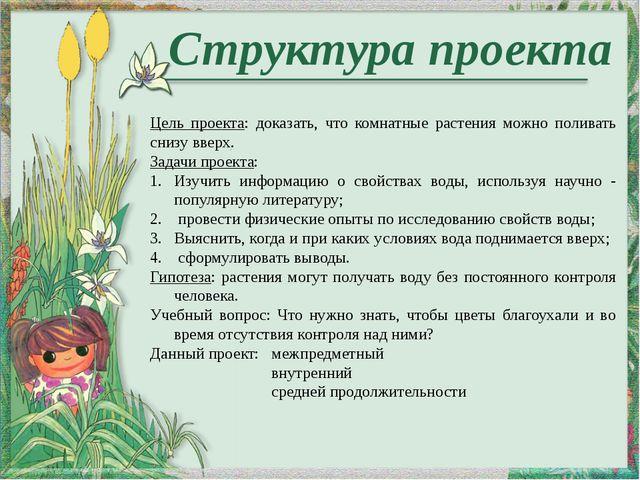 Структура проекта Цель проекта: доказать, что комнатные растения можно полив...