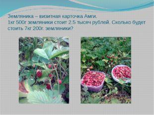 Земляника – визитная карточка Амги. 1кг 500г земляники стоит 2.5 тысяч рублей