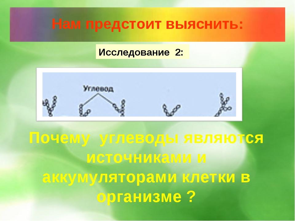 Исследование 2: Почему углеводы являются источниками и аккумуляторами клетки...