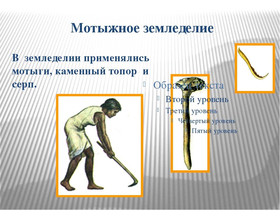 Мотыжное земледелие В земледелии применялись мотыги, каменный топор и серп.
