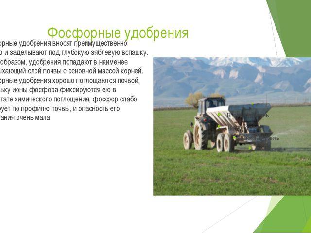 Фосфорные удобрения Фосфорные удобрения вносят преимущественно осенью и задел...