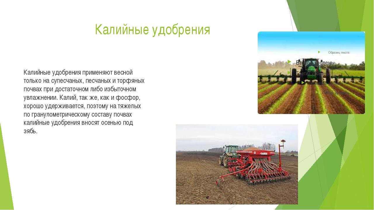 Калийные удобрения Калийные удобрения применяют весной только на супесчаных,...
