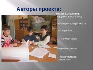 Авторы проекта: Работу выполнили: учащиеся 3 «А» класса Технического лицея №