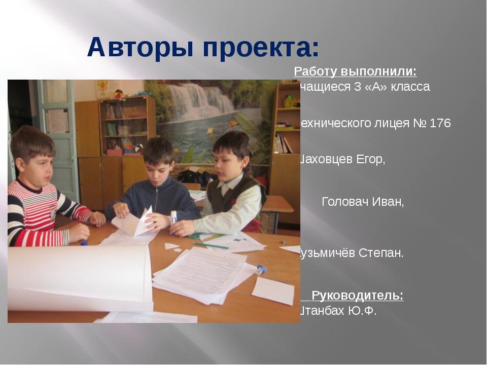 Авторы проекта: Работу выполнили: учащиеся 3 «А» класса Технического лицея №...