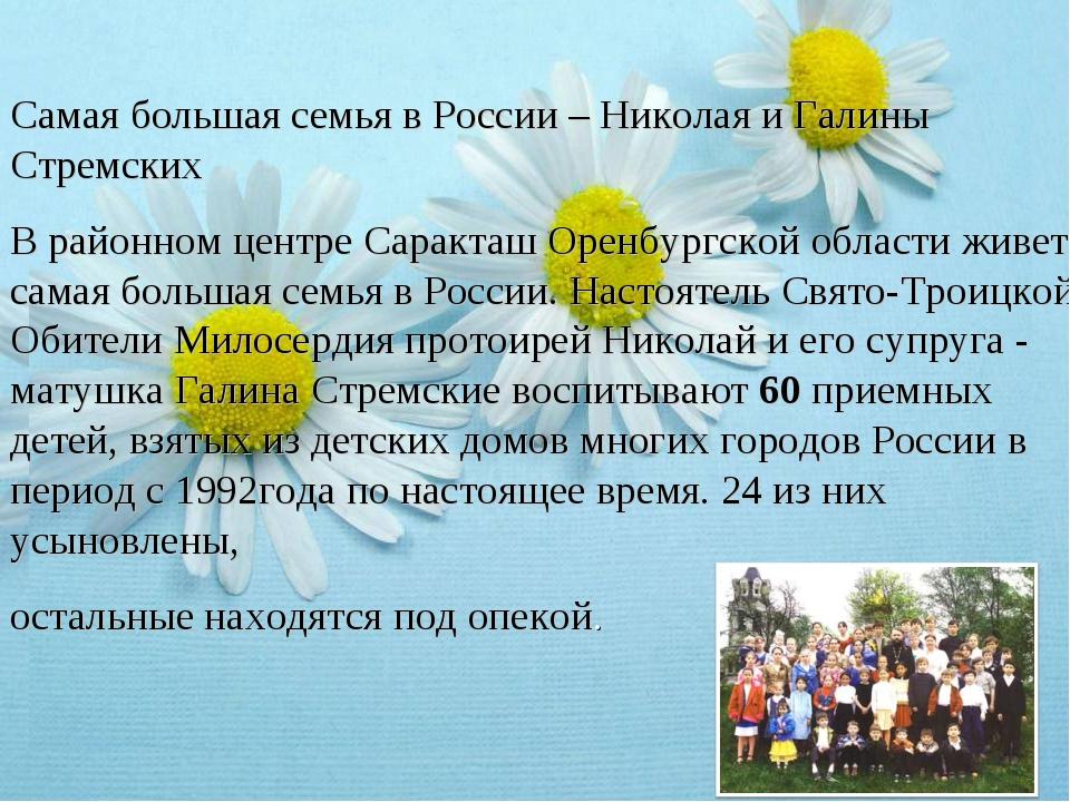 Самая большая семья в России – Николая и Галины Стремских В районном центре С...