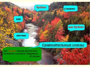Сравнительные союзы Как Будто Словно Как будто Точно Подобно тому как Лес, то