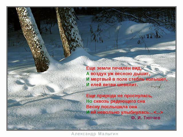 Еще земли печален вид, А воздух уж весною дышит, И мертвый в поле стебль кол...
