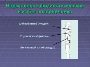Нормальные физиологические изгибы позвоночника Шейный изгиб (лордоз) Грудной