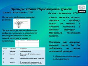 Примеры заданий/Продвинутый уровень 4 класс / Казахстан – 27% 8 класс / Казах
