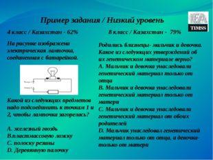 Пример задания / Низкий уровень 4 класс / Казахстан - 62% 8 класс / Казахстан