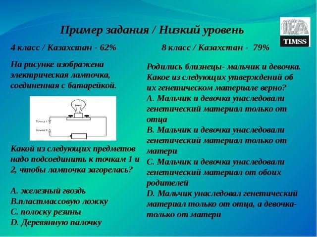 Пример задания / Низкий уровень 4 класс / Казахстан - 62% 8 класс / Казахстан...