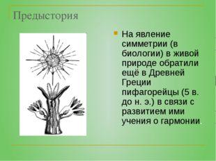 Предыстория На явление симметрии (в биологии) в живой природе обратили ещё в