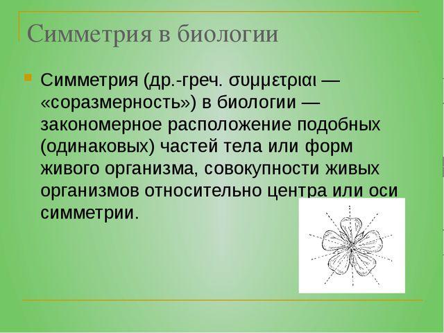 Симметрия в биологии Симметрия (др.-греч. συμμετριαι — «соразмерность») в био...