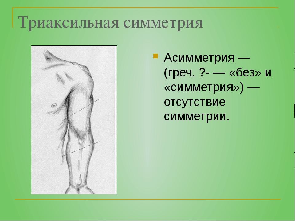 Триаксильная симметрия Асимметрия — (греч. ?- — «без» и «симметрия») — отсутс...