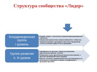 Структура сообщества «Лидер»