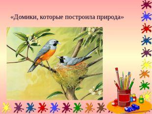 «Домики, которые построила природа»