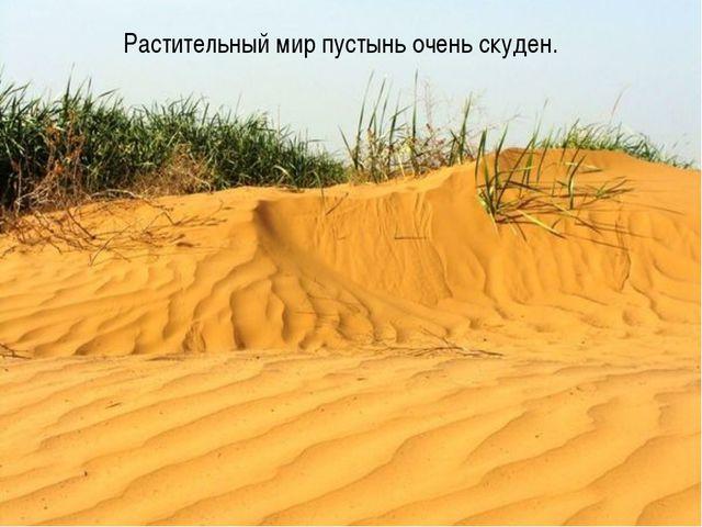 Растительный мир пустынь очень скуден.