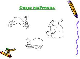Дикие животные: