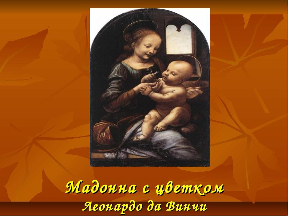 Мадонна с цветком Леонардо да Винчи