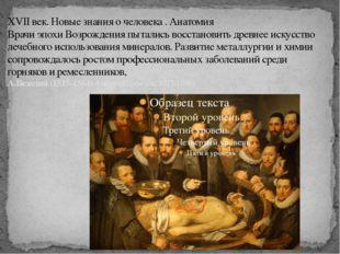 XVII век. Новые знания о человека . Анатомия Врачи эпохи Возрождения пытались