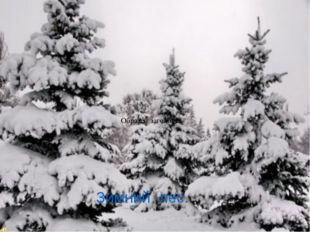 Составьте из слов предложение укрыл, снег, землю, одеялом надели, деревья, ша
