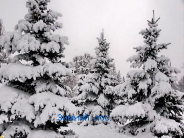 Составьте из слов предложение укрыл, снег, землю, одеялом надели, деревья, ша...