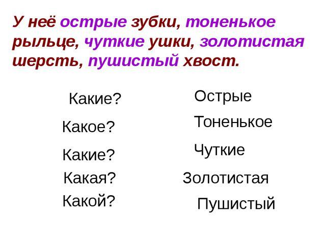 Нам помогли слова, отвечающие на вопросы «какой?», «какая?», «какое?», «каки...