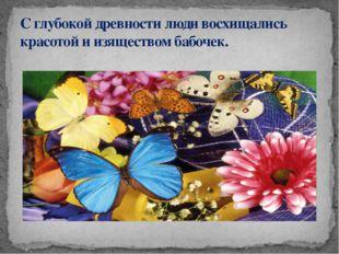 С глубокой древности люди восхищались красотой и изяществом бабочек.
