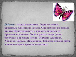 Бабочки - отряд насекомых. Одни из самых красивых существ на земле!. Они пох