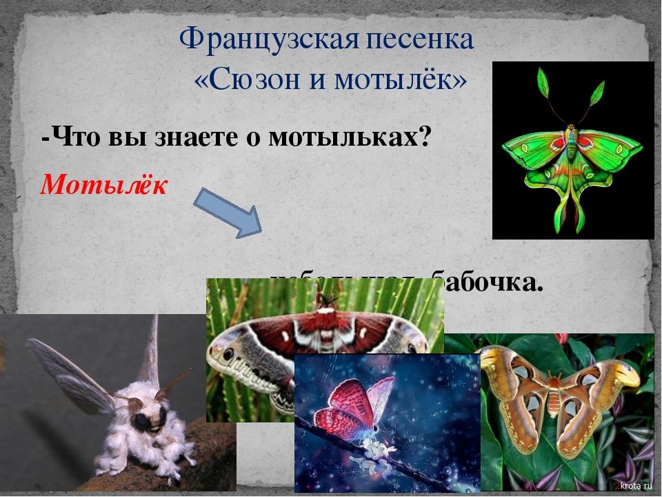 -Что вы знаете о мотыльках? Мотылёк небольшая бабочка. Французская песенка «С...