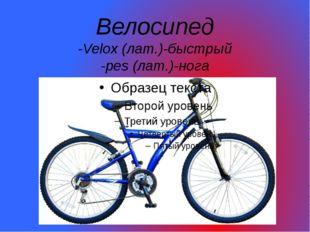 Велосипед -Velox (лат.)-быстрый -pes (лат.)-нога