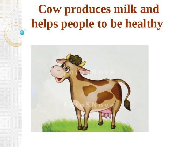 Cow produces milk and helps people to be healthy