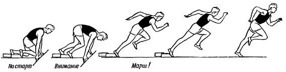 C:\Users\User\Pictures\beg-na-korotkie-distancii-sprint.jpg