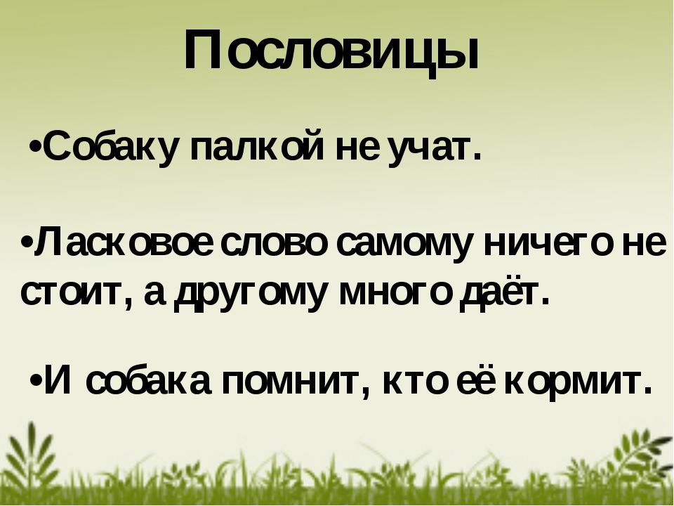 •Ласковое слово самому ничего не стоит, а другому много даёт. •Собаку палкой...