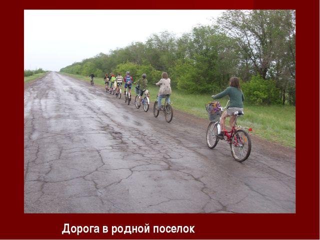 Дорога в родной поселок