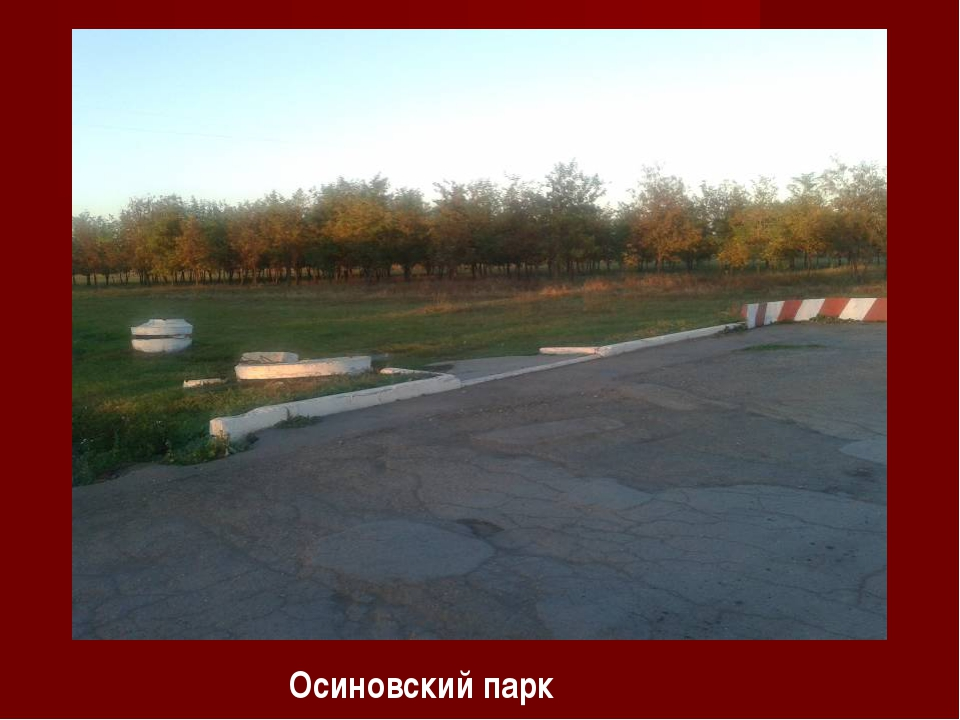 Осиновский парк
