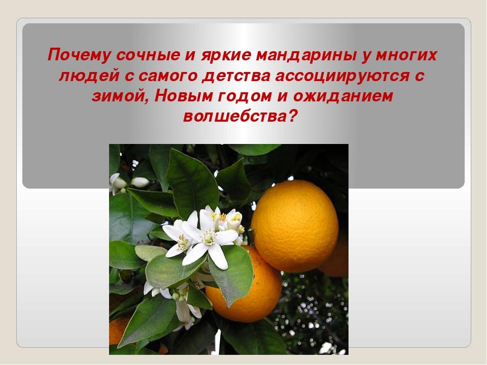 Почему сочные и яркие мандарины у многих людей с самого детства ассоциируются...