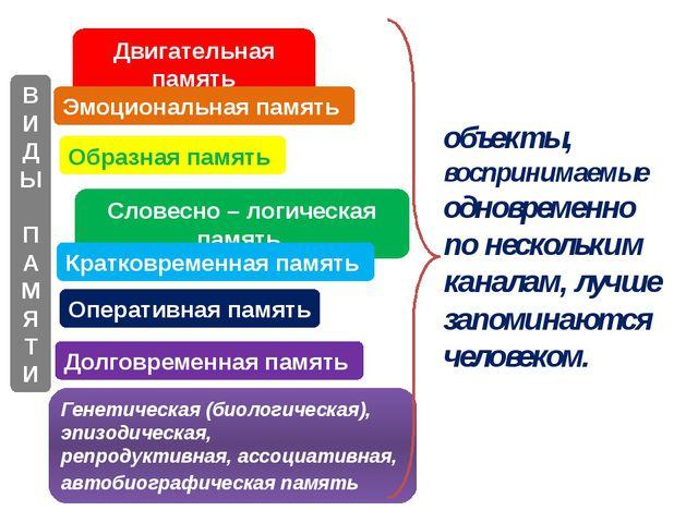 Двигательная память Эмоциональная память Образная память Словесно – логическа...