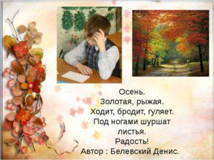 Осень. Золотая, рыжая. Ходит, бродит, гуляет. Под ногами шуршат листья. Радо