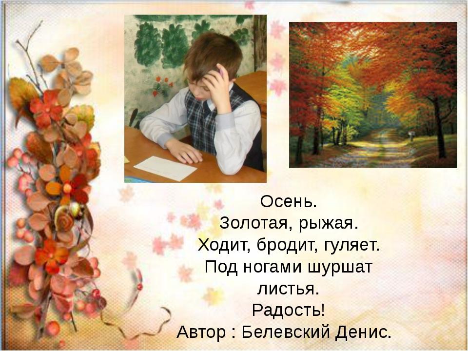 Осень. Золотая, рыжая. Ходит, бродит, гуляет. Под ногами шуршат листья. Радо...