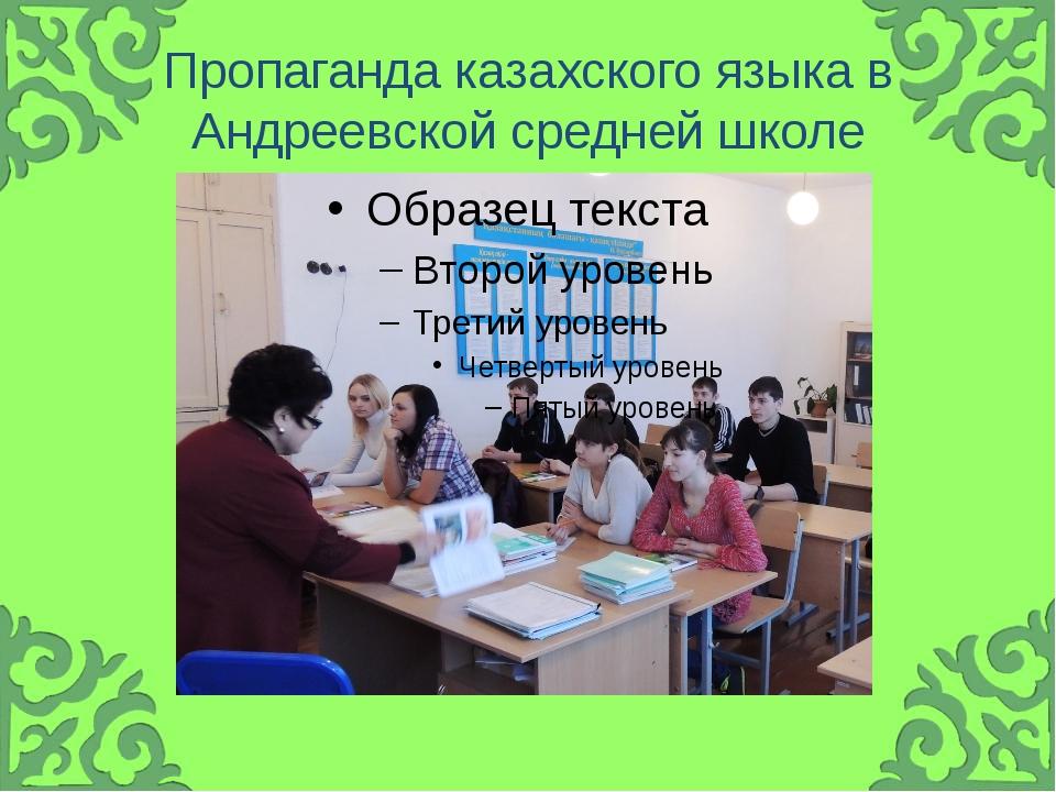 Пропаганда казахского языка в Андреевской средней школе