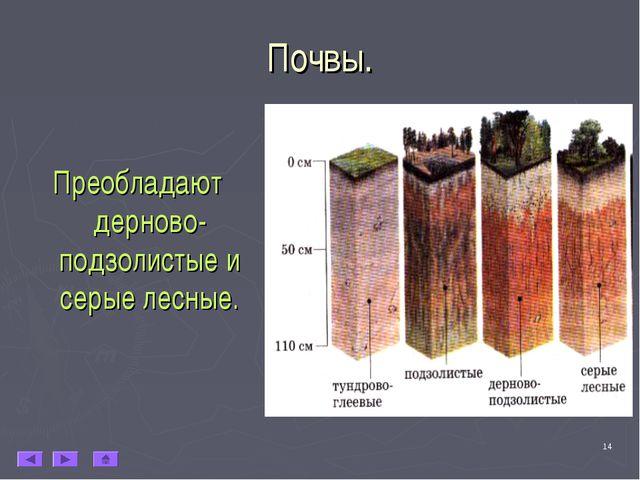 * Почвы. Преобладают дерново-подзолистые и серые лесные.
