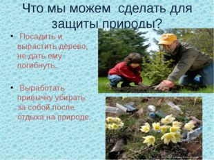 Что мы можем  сделать для защиты природы?  Посадить и вырастить дерево, не д